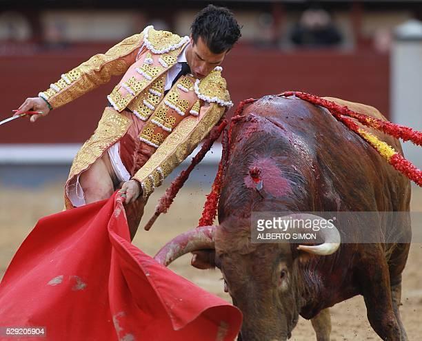 Spanish matador Morenito de Aranda performs a pass with muleta to a bull after being gored through the pants during the Feria de San Isidro at Las...