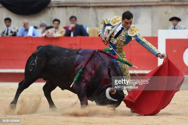 Spanish matador Paco Urena makes a muleta pass on a Fuente Ymbro fighting bull on September 17 2017 during the Nimes Vendages Feria in Nimes southern...