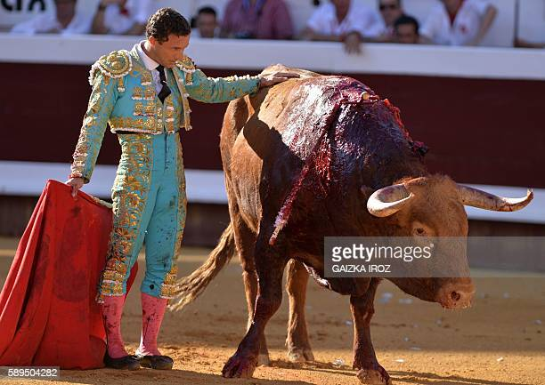 Spanish matador Rafaelillo touches the dying Pedraza de Yeltes bull at Dax arena during the feria in Dax southwestern France on August 14 2016 / AFP...