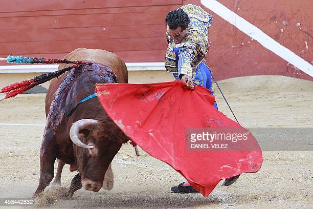 Spanish matador Yvan Fandino performs a pass on bull as part of the Bayonne corrida on August 10 2014 in Bayonne AFP PHOTO DANIEL VELEZ