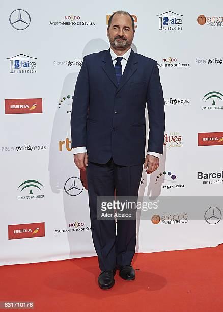 Spanish producer Alvaro Augustin attends the Jose Maria Forque Awards 2016 at Teatro de la Maestranza on January 14 2017 in Seville Spain