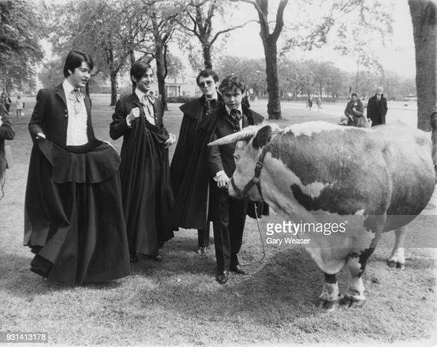 Spanish rock band Los Brincos play at bullfighting with Harold the bull in Hyde Park London 24th May 1967 They are drummer José Fernando Arbex Miro...