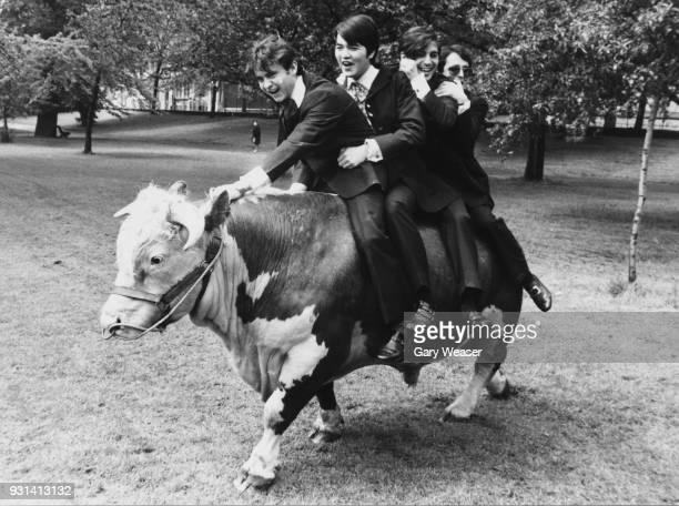 Spanish rock band Los Brincos riding on Harold the bull in Hyde Park London 24th May 1967 They are drummer José Fernando Arbex Miro rhythm guitarist...