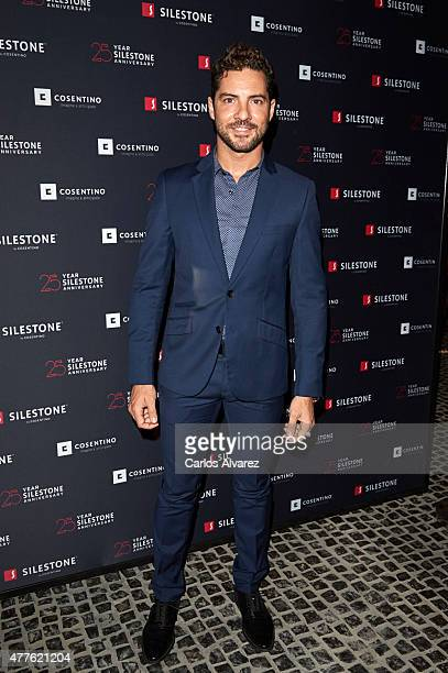 Spanish singer David Bisbal attends the 'Silestone' 25th anniversary at the Tatel Club on June 18 2015 in Madrid Spain