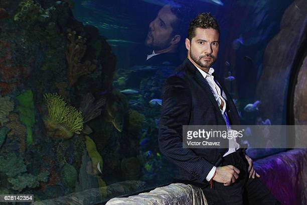 Spanish singer David Bisbal poses for photographers before a press conference to promote his new album Hijos Del Mar at Inbursa aquarium on December...