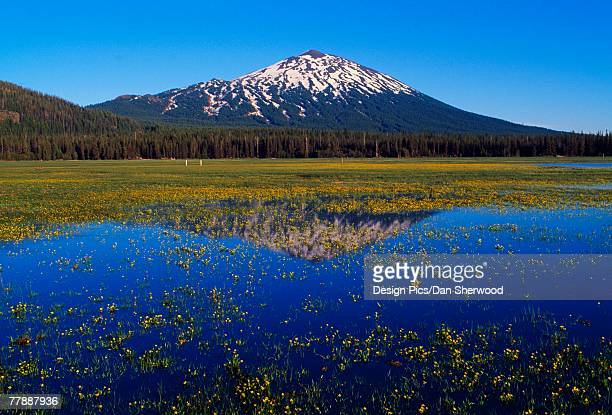"""sparks lake, mount bachelor reflection"" - dan peak stock photos and pictures"