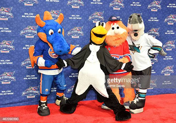 Sparky the Dragon of the New York Islanders Iceburgh of the Pittsburgh Penguins Youppi and Montreal Canadiens and SJ Sharkie of the San Jose Sharks...