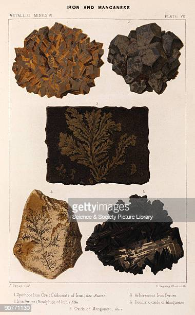 Spathose iron ore Iseve France iron pyrites bisulphide of iron Elba arborescent iron pyrites dendritic oxide of manganese oxide of manganese Harz...