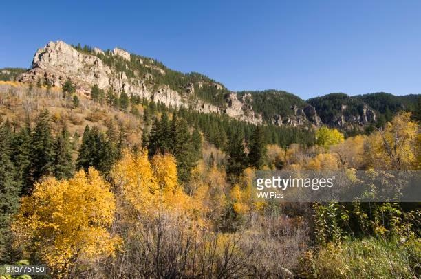 Spearfish canyon Black Hills South Dakota USA