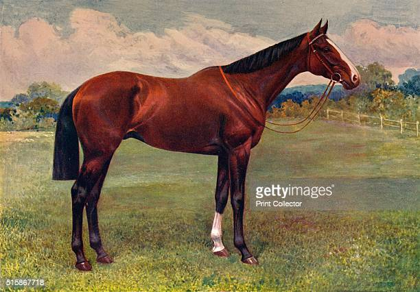 Spearmint circa 1905 Spearmint was a British thoroughbred racehorse and a sire owned by Major Eustace Loder In 1906 he won the Epsom Derby and was...