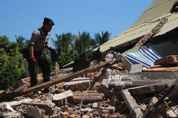 K9 special dog searches a victim around a damaged Mosque after an earthquake at Tanjung village in North Lombok Indonesia on August 8 2018 More than...