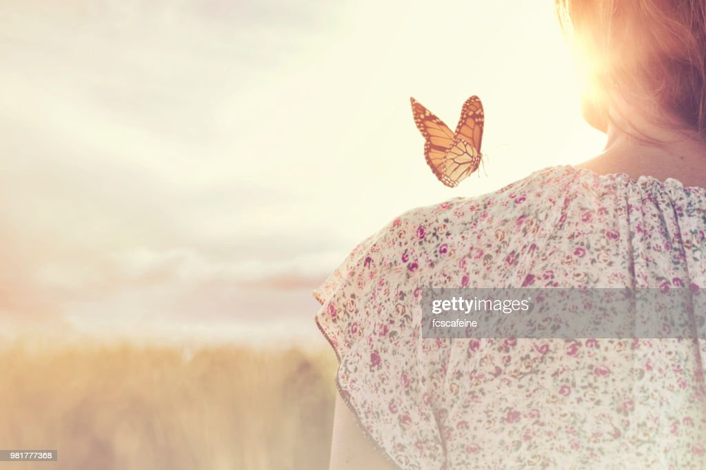 special moment of meeting between a butterfly and a girl in the middle of nature : Stock Photo