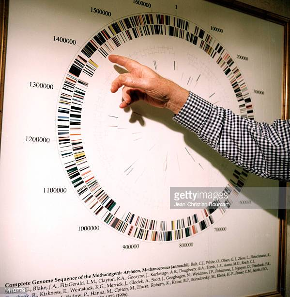 DNA specialist Craig Venter is expected on June 26 2000 to announce that they have essentially completed the sequencing of the human genome The...