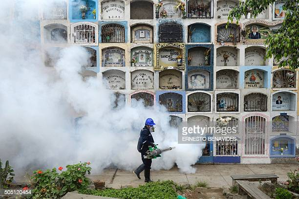 Specialist fumigates the Nueva Esperanza graveyard in the outskirts of Lima on January 15, 2016. Health officials fumigated the largest cementery in...