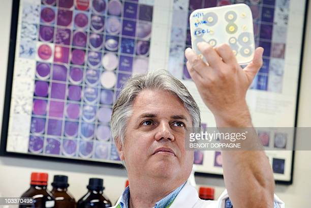 Specialist in microbiology and virology at the University hospital of Brussels professor Denis Pierard holds up a dish of bacteria culture at the...