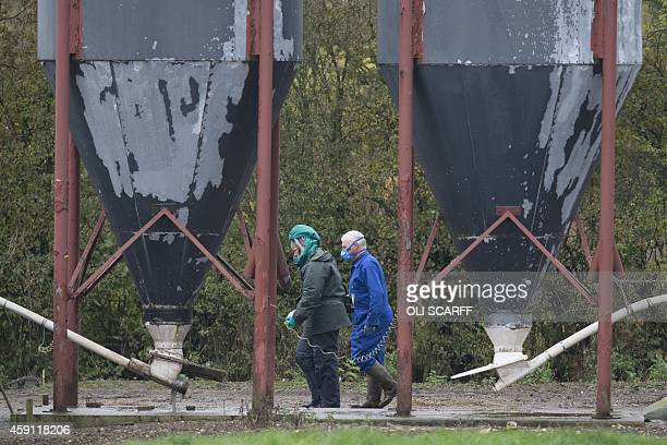 Specialists wearing protective clothing inspect a duck breeding farm where a case of bird flu has been identified in Nafferton in Yorkshire north...