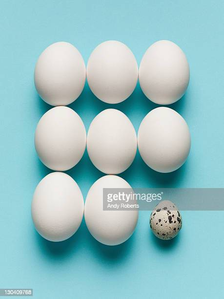 Speckled egg with large white eggs