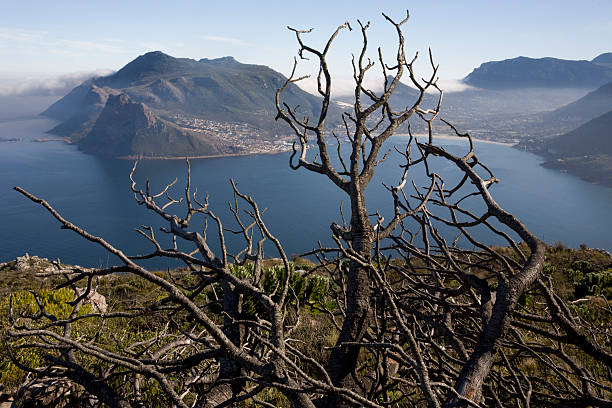 South africa landscape hout bay pictures getty images south africa landscape hout bay publicscrutiny Images