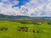 sukabumi extensive paddy rice fields marking
