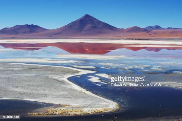 Spectacular mirror view of Laguna Colorada with its flamingoes Reserva Eduardo Avaroa on November 2017 in Bolvian Desert