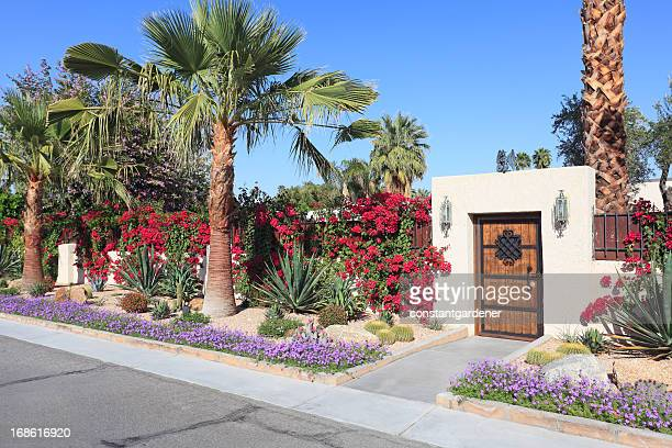 spectacular residential desert landscaping - palm springs california stock pictures, royalty-free photos & images