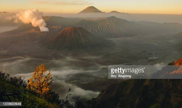 spectacular view of mount bromo at dawn view from the top of king kong hill. - bromo tengger semeru national park stock pictures, royalty-free photos & images