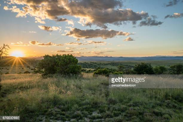 Spectacular view of Mountain Zebra national park at sunset, South Africa