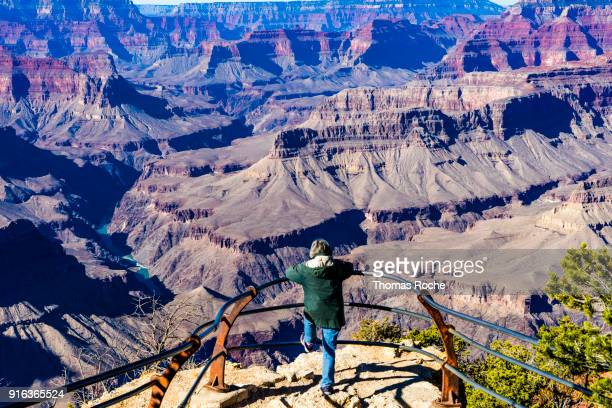 a spectator at the grand canyon spectacle - grand canyon village stock photos and pictures