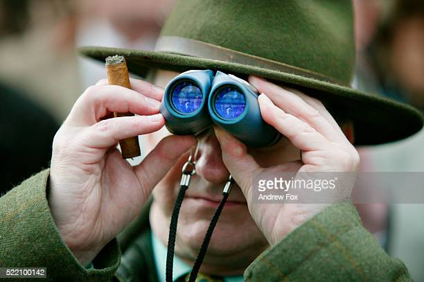 spectator watching horse race - horse racing stock pictures, royalty-free photos & images