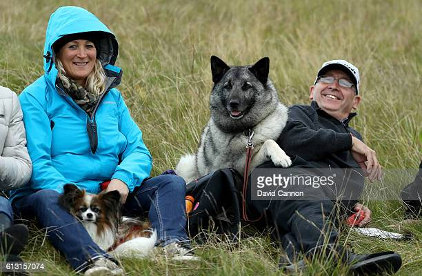 Spectators and their dogs enjoying the golf during the second round of the Alfred Dunhill Links Championship on the Golf Links course Kingsbarns on...