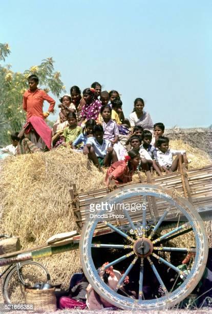 spectators at jallikattu bull taming at alanganallur near madurai, tamil nadu, india - jallikattu bulls stock pictures, royalty-free photos & images