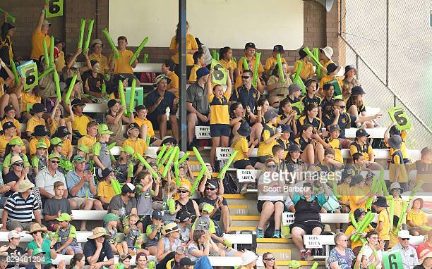 Spectators in the crowd enjoy the atmosphere during the Women's Big Bash League match between the Melbourne Stars and the Sydney Thunder at Lavington...