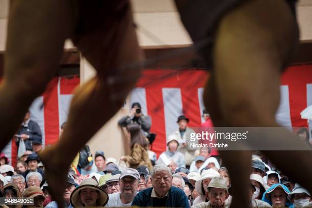 Spectators look at wrestlers fighting during 'Honozumo' ceremonial on April 16, 2018 in Tokyo, Japan. This annual offering of a Sumo Tournament to...