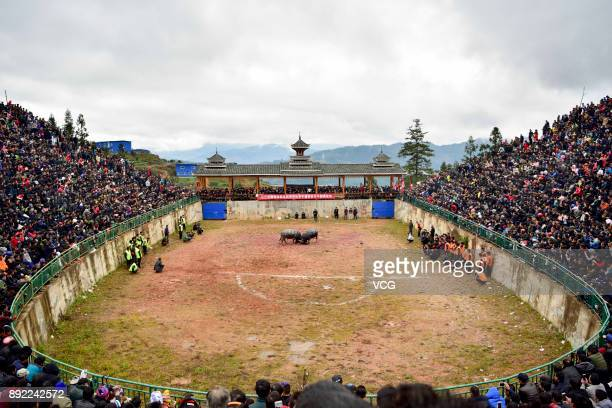 Spectators watch bullfight competition on December 14 2017 in QianDongnan Miao and Dong Autonomous Prefecture Guizhou Province of China Miao and Dong...