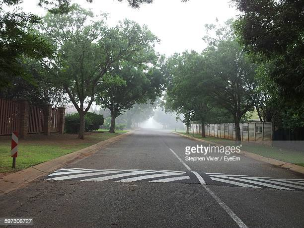 Speed Bump On Road Amidst Trees