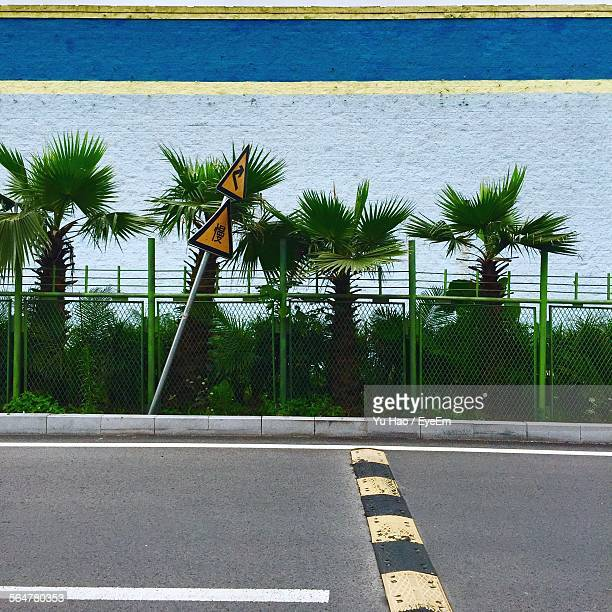 Speed Bump On Urban Road Against Plants In Front Of Wall