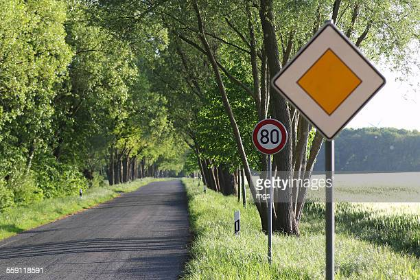 Speed limit and yield sign