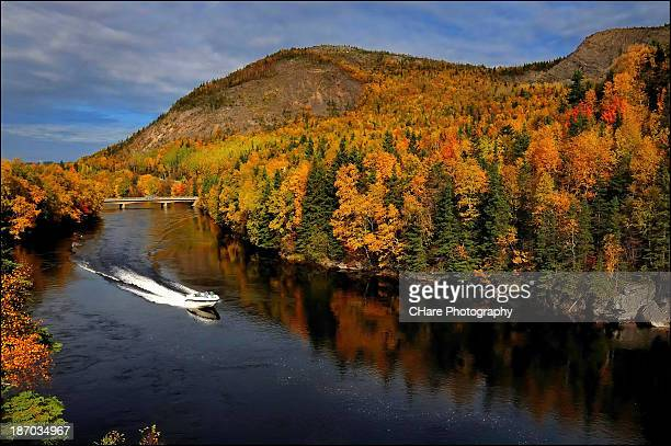 speeding through autumn - newfoundland and labrador stock pictures, royalty-free photos & images