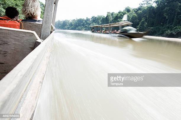 speeidng on the taman negara river with a wooden boat. - taman negara national park stock photos and pictures