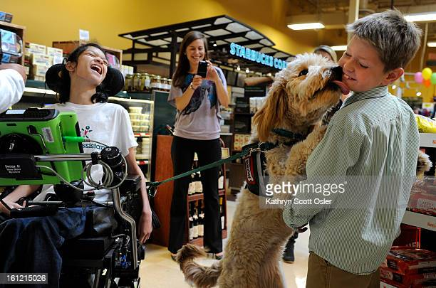 Spencer Findley right gets a big wet greeting from Parti a service dog belonging to Lauren Opipari left Findley of Denver will soon have a canine...