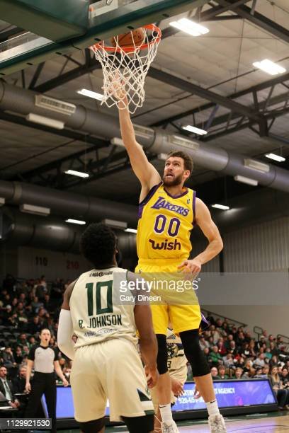 8651436b7 Spencer Hawes of the South Bay Lakers shoots against Robert Johnson of the  Wisconsin Herd during