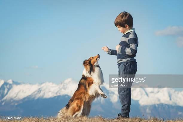 家族と素敵な晴れた日を過ごす - 動物芸 ストックフォトと画像