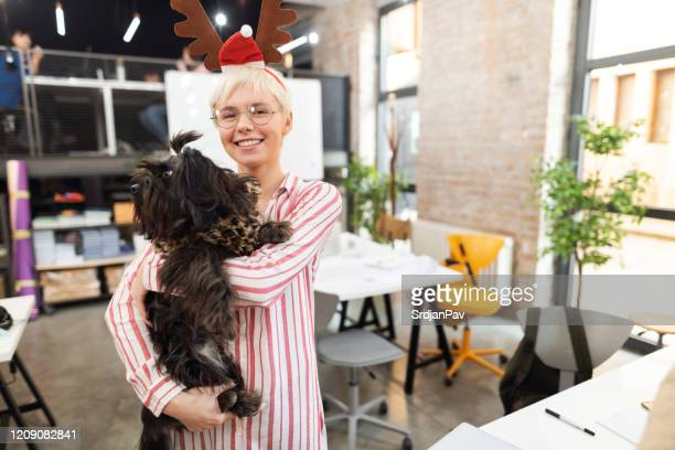 spending christmas with my fluffy bestie - businesswear stock pictures, royalty-free photos & images