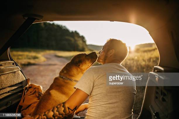 spending day with dog in nature - outdoor pursuit stock pictures, royalty-free photos & images