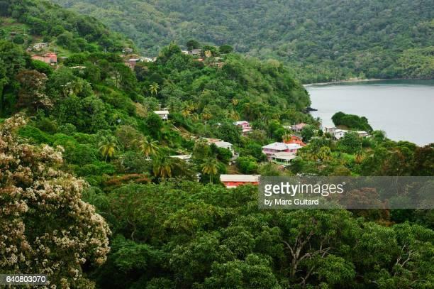 speyside, tobago, trinidad & tobago - paisajes de trinidad tobago fotografías e imágenes de stock