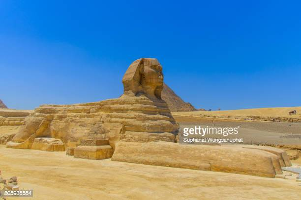 sphinx and great pyramids at giza - cairo stock pictures, royalty-free photos & images