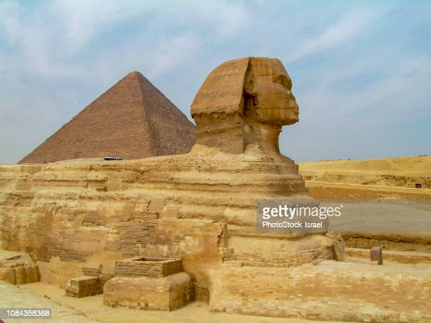 sphinx at giza, egypt - the sphinx stock pictures, royalty-free photos & images