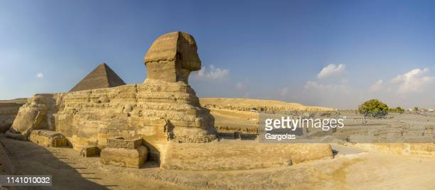 sphinx in giza, cairo, egypt - north africa stock photos and pictures