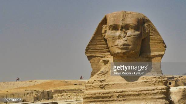 sphinx of gizeh, egypt - egypt stock pictures, royalty-free photos & images