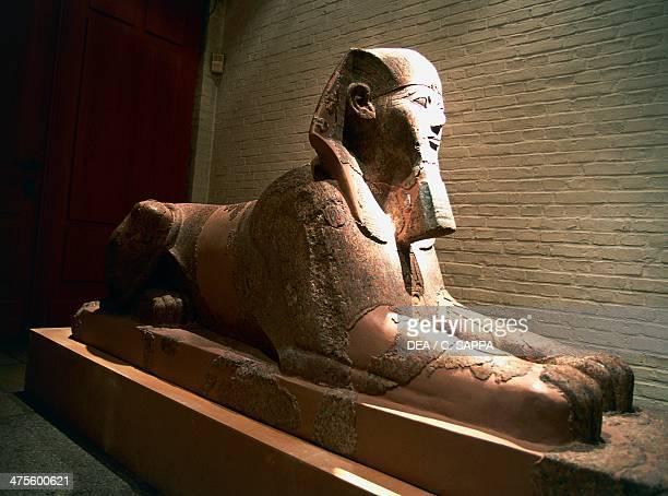 Sphinx of Queen Hatshepsut Egyptian civilisation New Kingdom Dynasty XVIII
